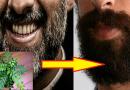 यदि आप भी अपनी सफेद दाढ़ी से परेशान है तो अपनाये ये चमत्कारी नुस्खे …