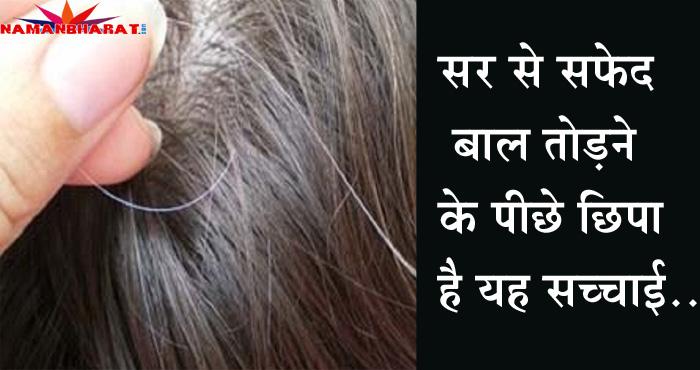 जाने सर से सफ़ेद बाल तोड़ने के पीछे छिपी क्या है सच्चाई, बालों से जुड़े इन बातों को जरूर जान लें