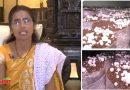 मिलिए बिहार की 'मशरूम लेडी' से, पलंग के नीचे खेती करके कमा रही हैं आज लाखों रुपया